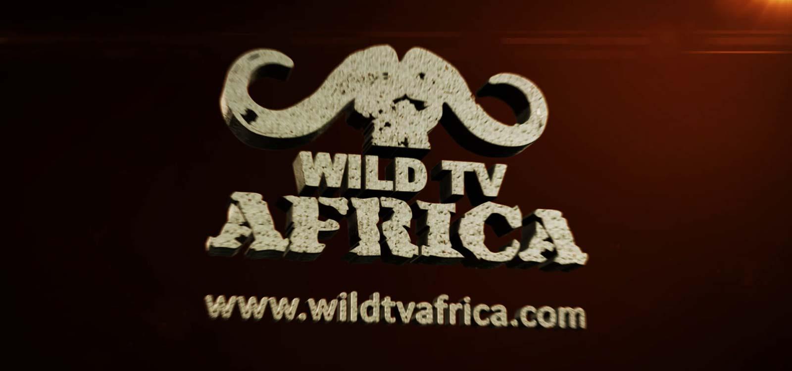 wild tv africa